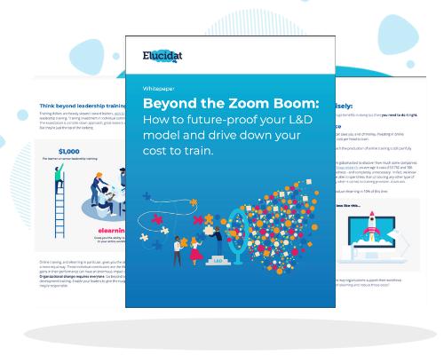 Beyond the Zoom Boom [Whitepaper]
